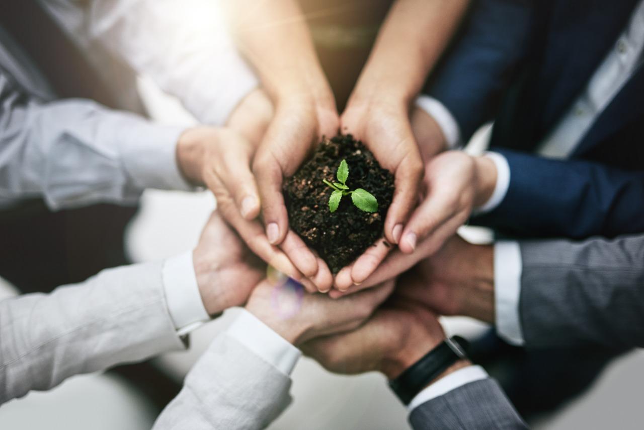 Como fomentar a cultura ESG em todos os níveis da empresa?